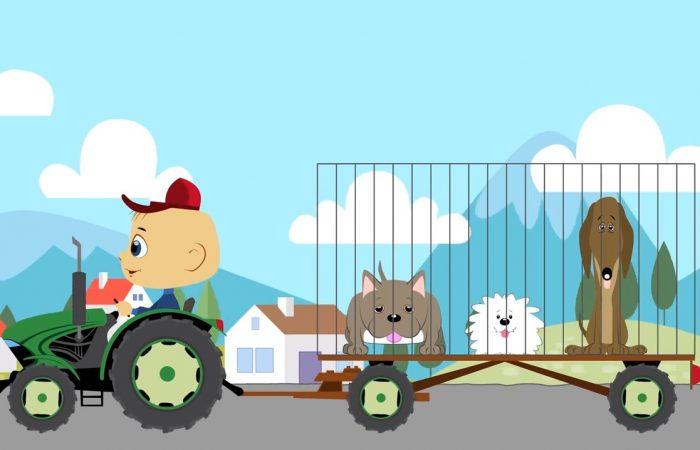 Kutyakaland Traktor Robival