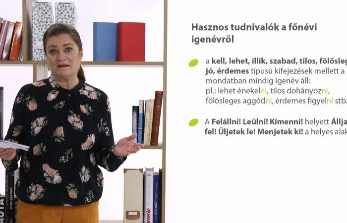 Magyar nyelv – Az igenevek